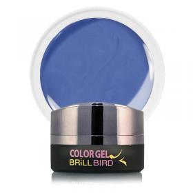 Color Gel C13